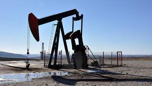 TPAOya 13 petrol arama ruhsatı verildi
