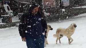 Seydikemerde kar yağışı ulaşımı olumsuz etkiledi