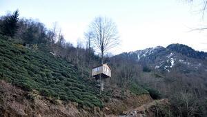Karadenizlinin 'ağaç kondu' evine turistlerden yoğun ilgi