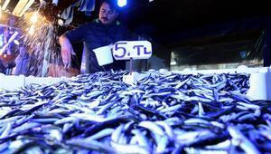 864 bin 942 kilogram hamsi ihracatı yapıldı