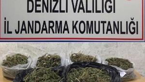 Honazda uyuşturucuya 1 tutuklama