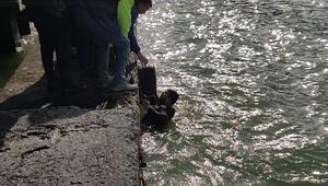 Denize atlayıp, intihara kalkışan genç kızı balıkçılar kurtardı