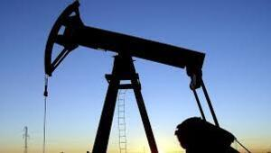 TPAOya 21 petrol arama ruhsatı verildi
