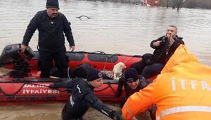 Susurluk Çayıtaştı, mahsur kalan 7 köpekten 4ü kurtarıldı