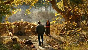 SİYADa 'Ahlat Ağacı' damgası