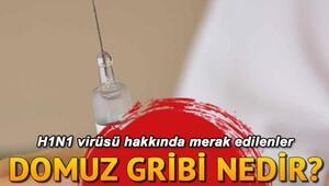 Serdar Ortaçın kardeşinin hastalığı H1N1 virüsü nedir