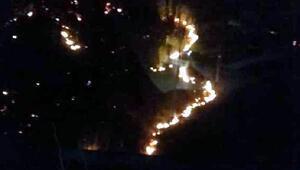 Çaykarada orman yangını: 10 dönüm alan zarar gördü