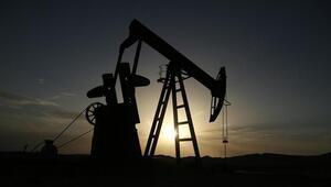 TPAOya 11 petrol arama ruhsatı verildi