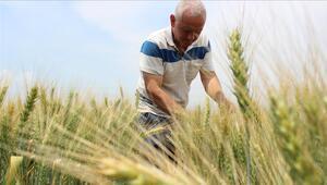 Çiftçilere ABnin çevre ve hijyen standartları için destek