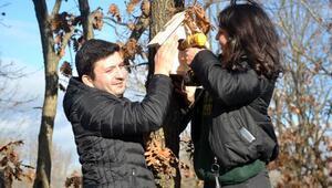 Liseli öğrenciler, kuşlar için sevgi yuvası yaptı