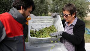 Asma, zeytin ve badem için koruma önlemi