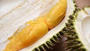 Dikkatli tüketilmezse öldürücü olabilecek 10 yiyecek
