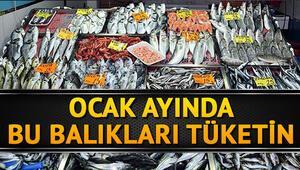 Ocak ayında hangi balıklar yenir Ocakta yenilmesi gereken balıklar