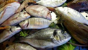 Hangi balık nasıl pişirilir