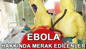 Ebola nedir Ebola hakkında merak edilenler