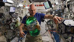 NASA çalışanları tuvalet temizlemeye başladı