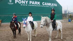 Pony Park'ta yüzleri gülüyor