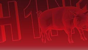 Hindistanda domuz gribi salgını: 169 ölü