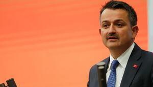 Bakan Pakdemirli: 30 milyon lira tazminat ödendi