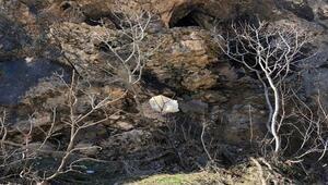 PKKlıların kayalıklara gizlediği malzemeler bulundu