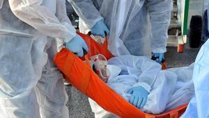Ebola virüsü öldürmeye devam ediyor