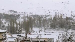 Çelikhanda kar yağışı hayatı olumsuz etkiledi
