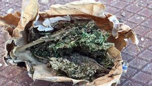 Tokatta uyuşturucu operasyonunda 13 tutuklama