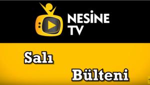 Fenerbahçe-Zenit TEK MAÇ iddaa tahminleri - 12 Şubat 2019