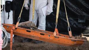 Meksikada gizli mezarlarda 50 ceset bulundu
