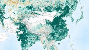 NASA: Dünya genelinde yeşil alan son 20 yılda yüzde 5 arttı