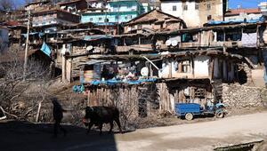 Nepal değil Manisa Foto safari tutkunlarının uğrak yeri oldu...