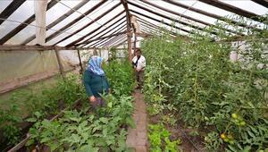 DOĞAKAdan çiftçiye SERA desteği
