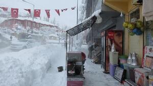Van ve Bitliste 323 yerleşim birimi ulaşıma kapandı