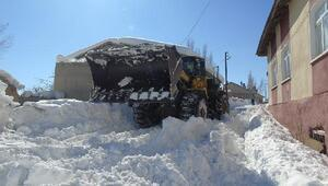 Başkalede kamyonlara yüklenen kar ilçe dışına çıkarılıyor