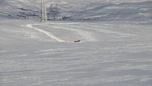 Paletli araç, buzun kırılmasıyla suya gömüldü