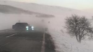 Ardahanda ulaşıma kar ve tipi engeli