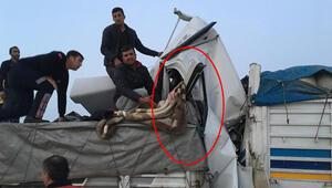 Adanada feci ölüm Arkadan çarptı...