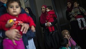 Avrupa Konseyinden Yunanistana sığınmacı eleştirisi