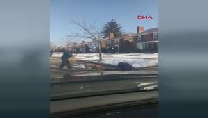 Postacı, pitbull saldırısına uğradı