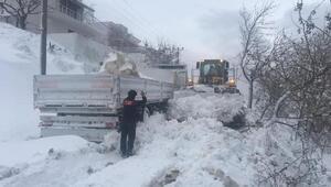 Marmara Adasında kar yağışı etkili oldu