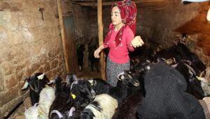 Genç Çiftçilik projesiyle Mervenin hayatı değişti