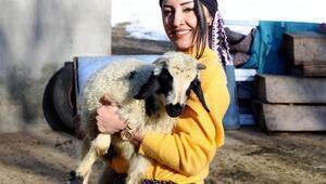 Üniversite mezunu Meryem, köyüne muhtar adayı oldu