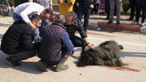 Sürücünün Ne olur ölme diye başında ağladığı çarptığı kadın kurtarılamadı