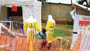 KDCde Ebola 496 can aldı