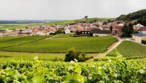 Şampanya güzeli: Epernay