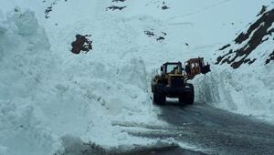 Çığ nedeniyle kapanan Hakkari- Şırnak karayolu açıldı