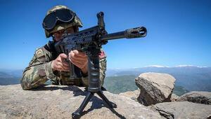 Mardinde PKKya ağır darbe... Gri listedeki terörist öldürüldü