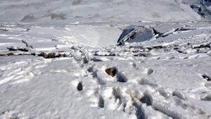 Sızıntı olan Alucra Barajında su tahliyesi bitti, risk ortadan kalktı