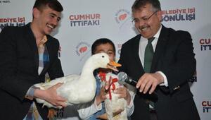 Çocuğun şaşırtan isteği sonrası başkandan ördeklere temsili nikah