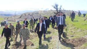 Şırnak'ta Adalet Ormanı oluşturuldu